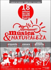cartel musica 2015